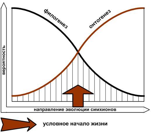 http://veinik.ru/veinik/img/blog/1163305915610.jpg